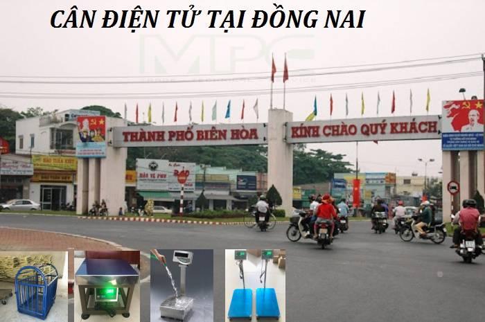 Cân điện tử tại Đồng Nai