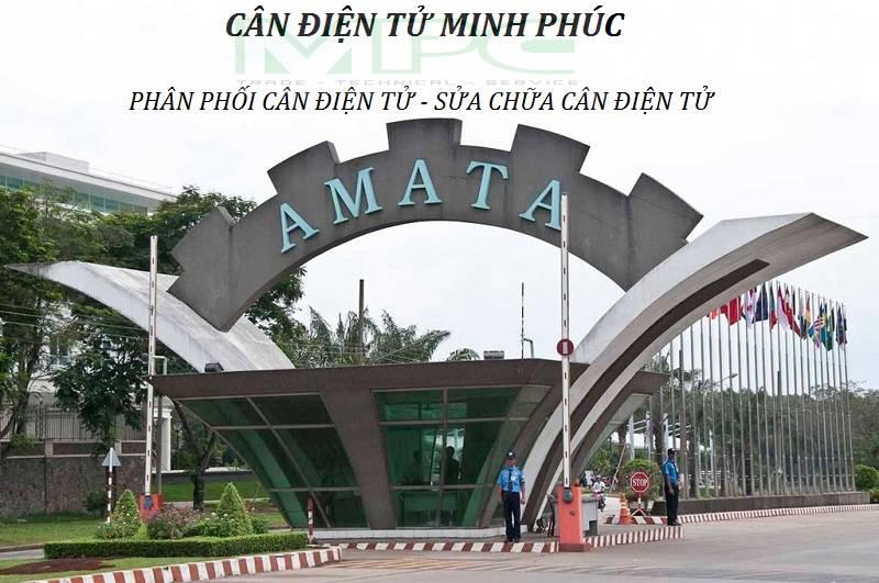 Cân điện tử tại KCN AMATA Biên Hoà Đồng Nai