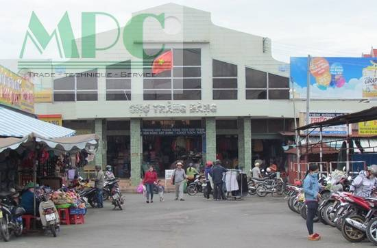 Cân điện tử tại Tây Ninh