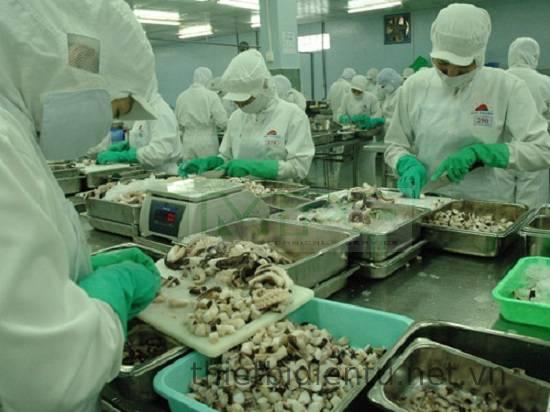 Lý do công ty chế biến thủy hải sản nên sử dụng cân điện tử chống nước