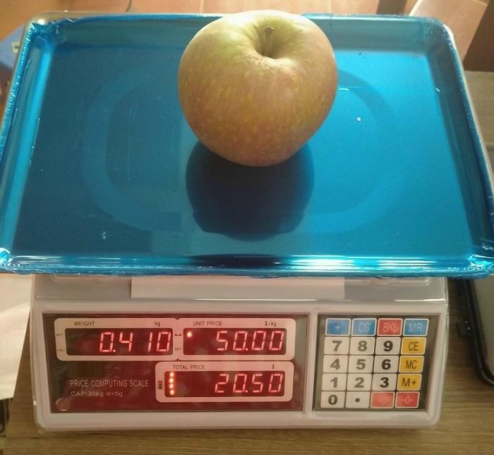 Tìm hiểu về cân tính tiền UTE