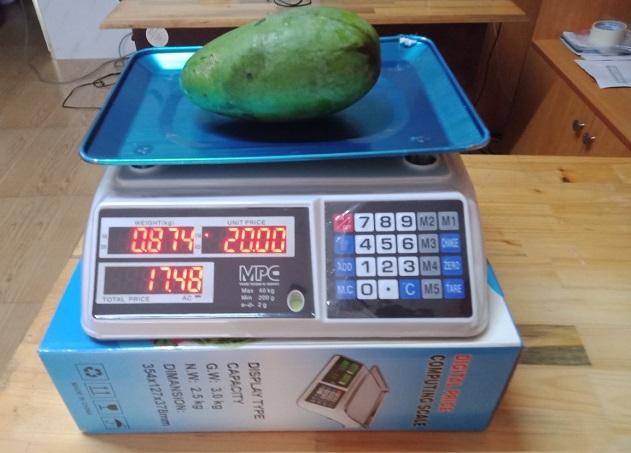 Ứng dụng cân điện tử 15kg và những điều cần biết